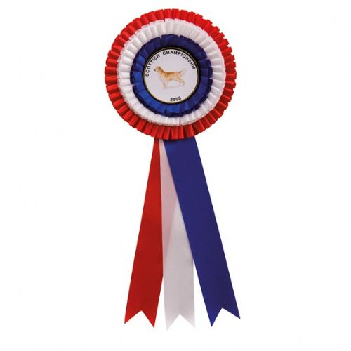 Large Red/White/Blue Rosette